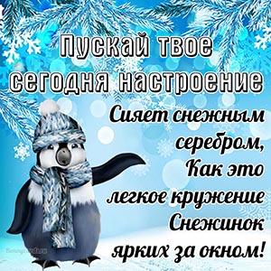 Зимняя картинка с пингвином в шапке и пожеланием