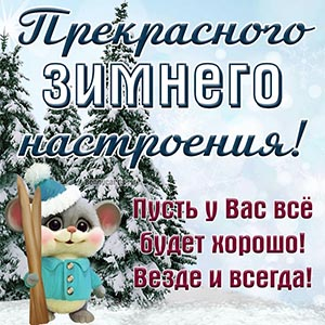 Картинка прекрасного зимнего настроения с мышкой
