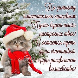 Доброе пожелание зимнего настроения в стихах с котом