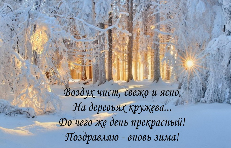 Открытка с началом зимы - зимний лес на восходе солнца