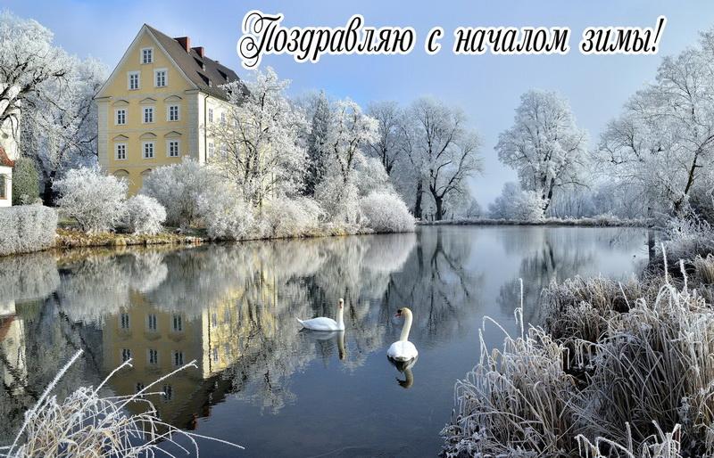 Открытка с началом зимы - пруд с лебедями и деревья в снегу
