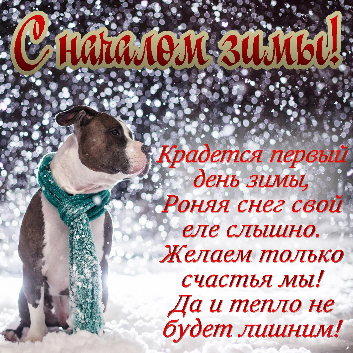 поздравления с первым днем зимы в стихах удмуртии это комфортабельные