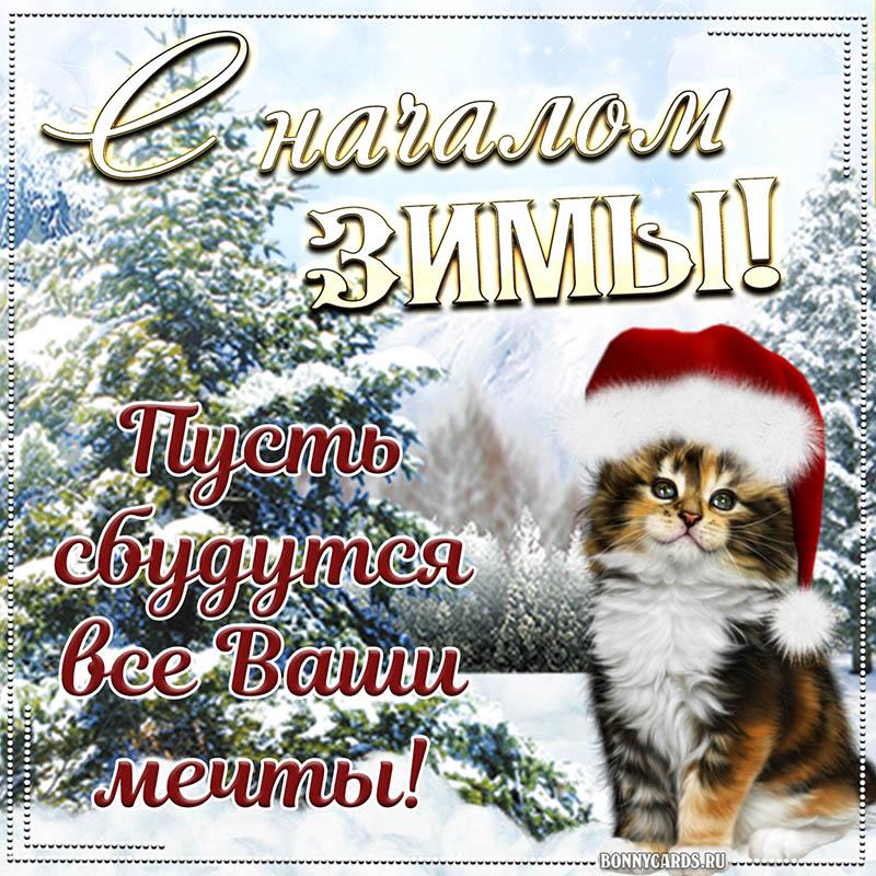 Картинка к началу зимы с котиком и пожеланием