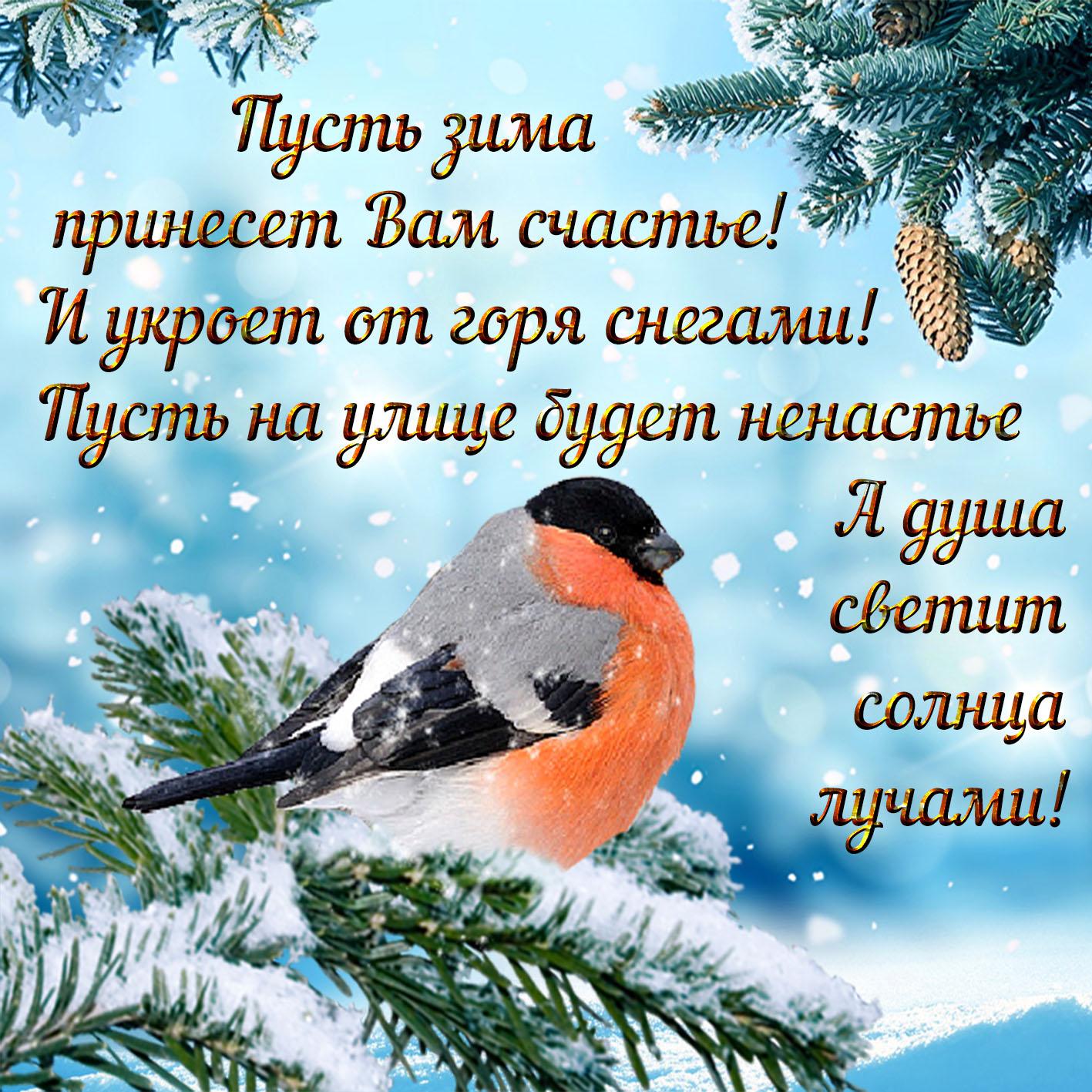 Открытка зимняя красивая с пожеланиями, надписью