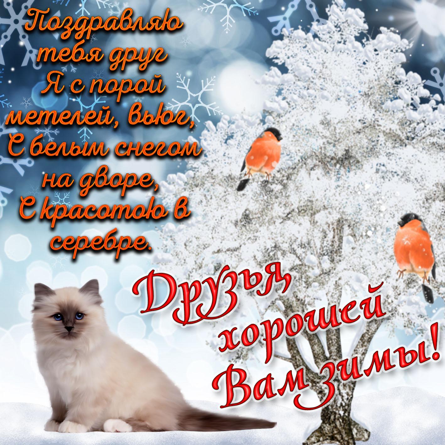 открытки для друзей зимние мошенническим путем завладела