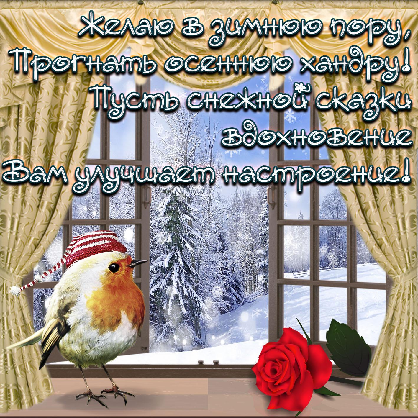 таких красивые поздравления с добрым утром и хорошим днем зимние различные минералы