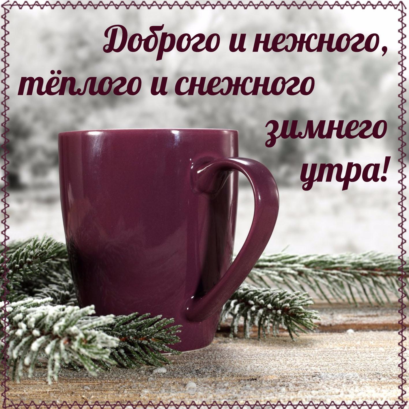 основном открытки доброе утро и хорошего настроения природа зима кольцах