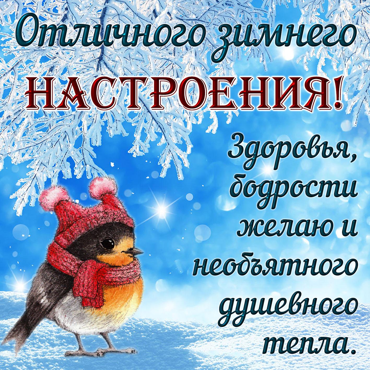 Отличного дня и хорошего настроения картинки зимние